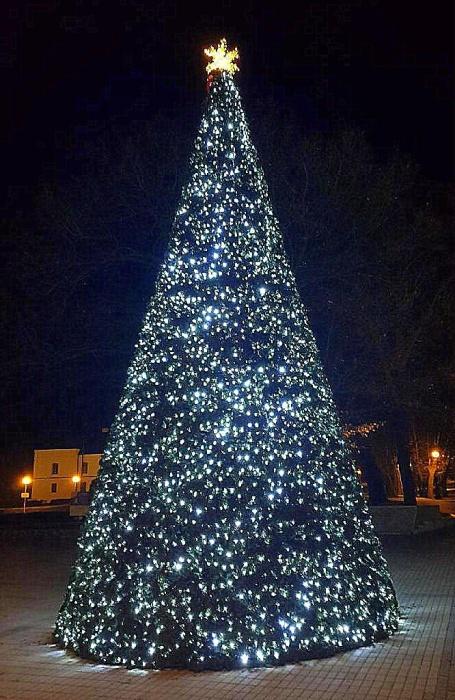 200ba5860ca23 Dva vianočné stromčeky – dvojnásobná radosť ::: Aktuality a oznamy ...